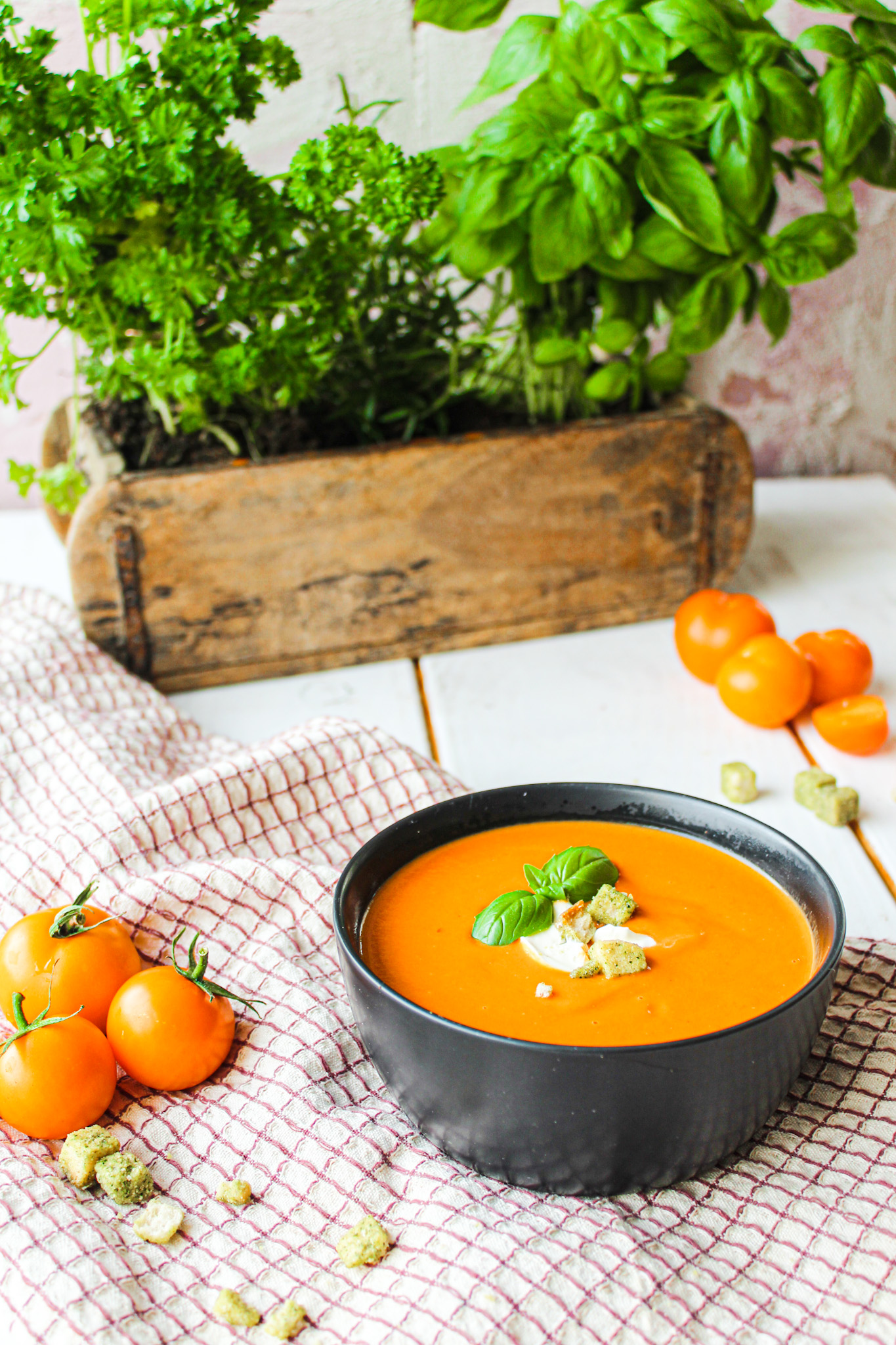 Ofen Tomatensuppe